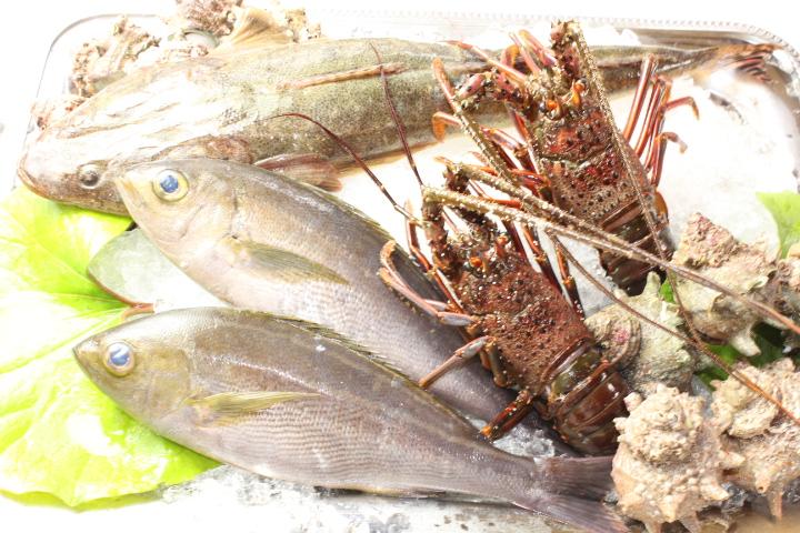 新鮮な野菜、肉、魚介